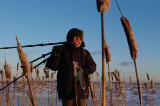 Suomen luonnonsuojeluliiton erityisasiantuntijan Tapani Veistolan mukaan pallo on nyt metsäalalla.